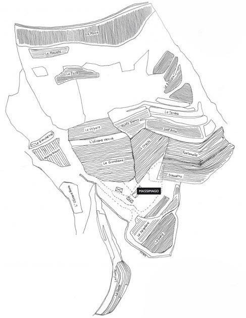 mappa dei vigneti di massimago in valpolicella