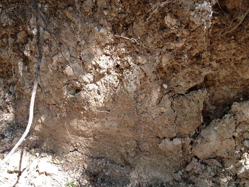 soils that make up the territories of massimago