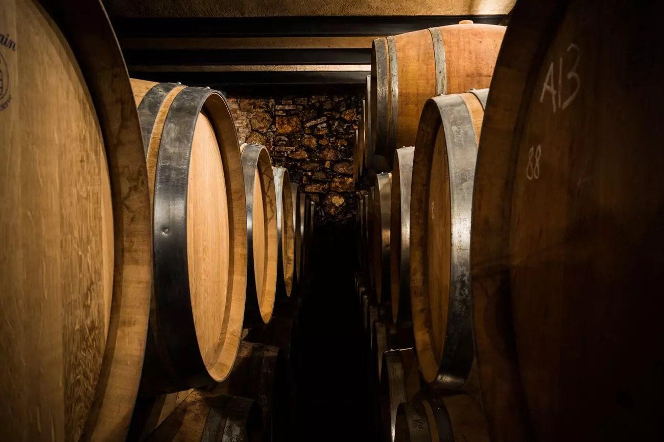 botte di vino amarone della valpolicella massimago